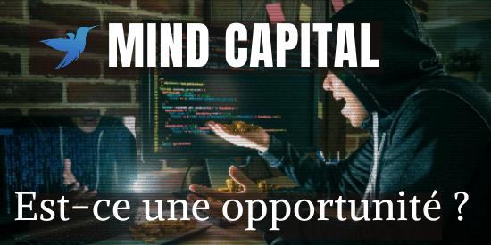 avis mind capital